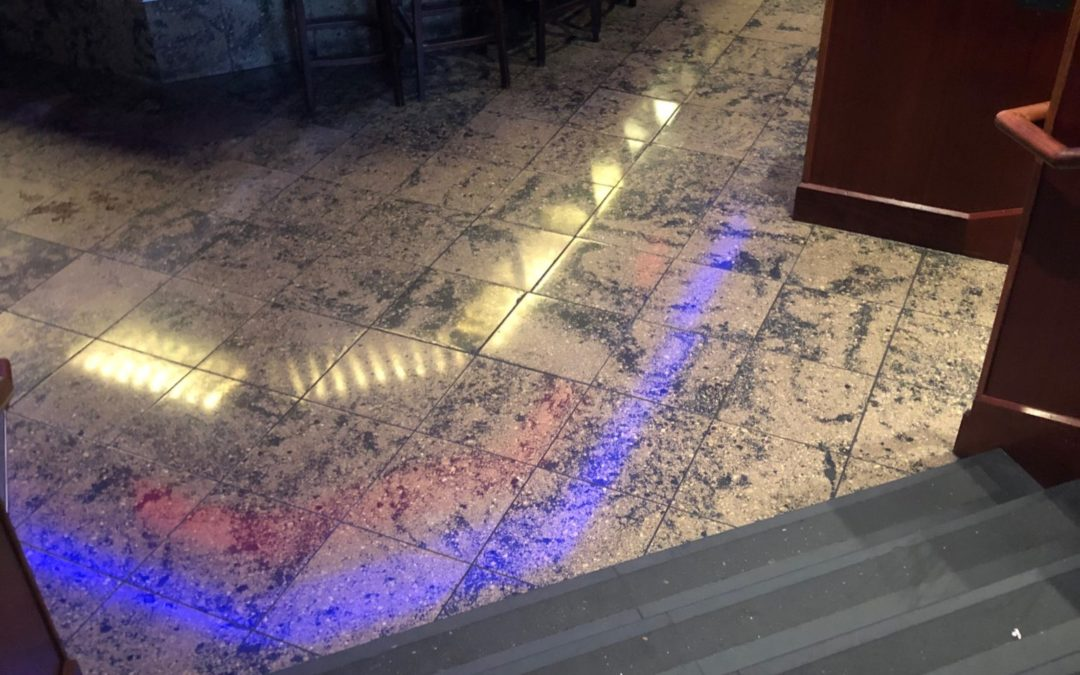 Terrazzo Floor Restoration Largo Md Zoltan Stone Works